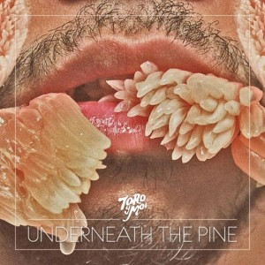 Toro y Moi - Underneath the Pine cover