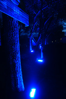 Cool lights at night