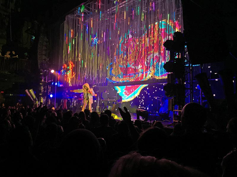 The Flaming Lips 12