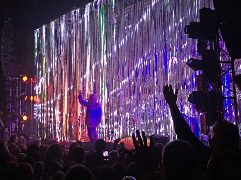 The Flaming Lips 7